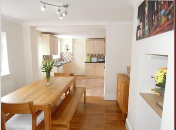 EasyRoommate UK - Lovely, spacious home with woodburner, Plymouth. - St Judes, Plymouth - £415