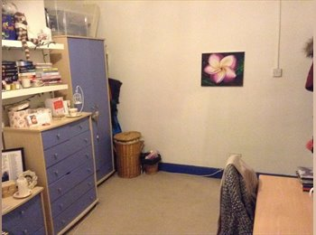 EasyRoommate UK - Double room in Chapel Allerton house share - £277pm - Chapel Allerton, Leeds - £277