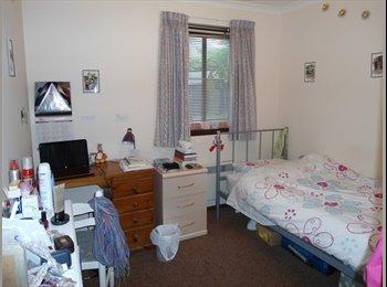 EasyRoommate UK - Aberdeen flat - Aberdeen, Aberdeen - £450