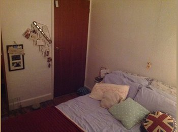 EasyRoommate UK - Gorgeous happy clean double room 235 pm - Roath, Cardiff - £235