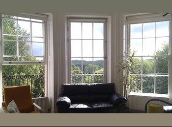EasyRoommate UK - Sunny south facing room in Georgian flat - Preston, Preston - £320