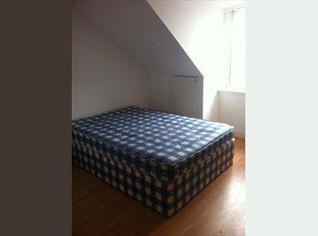 EasyRoommate UK - ROOM IN NICE STUDIO FLAT - Finsbury Park, London - £600