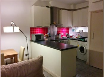 EasyRoommate UK - Spacious Room in Oval - Stockwell, London - £875
