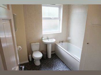EasyRoommate UK - Beautiful house available 2015/16 - Sharrow Vale, Sheffield - £316