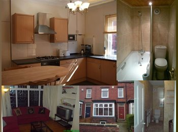 PROFESSIONAL HOUSE SHARE - 1 room(s) £310PCM