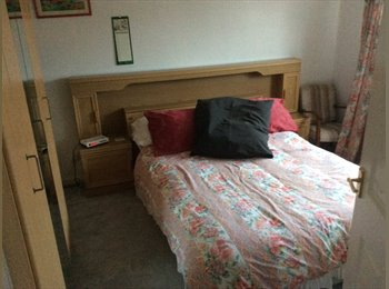 EasyRoommate UK - John - 26 - Peterborough