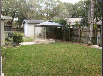 Room for Rent in Seffner, Florida