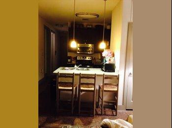 EasyRoommate US - Looking for girl roommate! Apartment near UT! - UT Area, Austin - $790