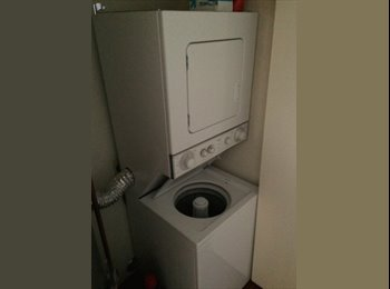 One room for rent in a 2b2b