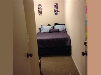 EasyRoommate US - 1 of 4 fully furnished bedrooms!  - Lawrence, Lawrence - $344