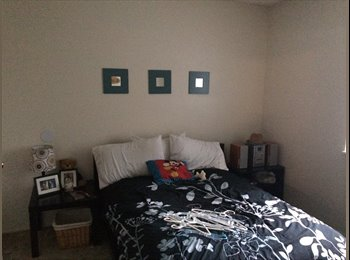 Room and private bath in Carrollwood