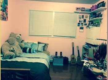 EasyRoommate US - Single room in Beautiful Richmond home-$650 - Richmond, San Francisco - $650