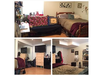 EasyRoommate US - Subletting Bedroom at 508 Walnut - Ann Arbor, Ann Arbor - $550