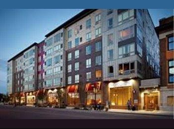 EasyRoommate US - $490 Room available! - University, Minneapolis / St Paul - $490