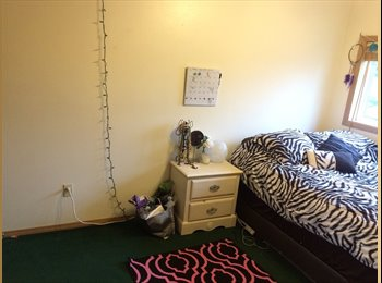 Room available near campus from march-august