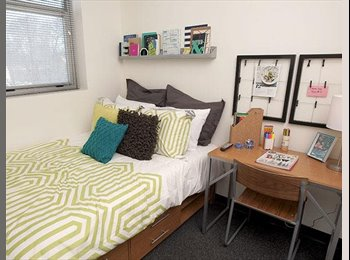 EasyRoommate US - 5 Bedroom, 3 Bathroom Apartment in Landmark - Ann Arbor, Ann Arbor - $1000