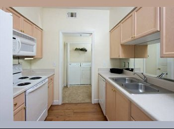 Room with Private Bathroom (Buckhead/Lindbergh)