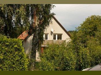 2 helle Zimmer in Haus/gr. Garten/Natur/Linznähe