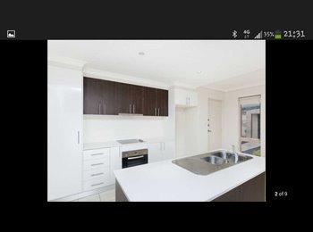 EasyRoommate AU - room for rent  - Queanbeyan, Queanbeyan - $250