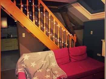 Appartager BE - Appart à partager entre filles :)  - Montigny-le-Tilleul, Charleroi - €400
