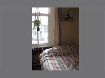EasyRoommate CA - petite chambre simple et très jolie avec walk-in - Le Plateau-Mont-Royal, Montréal - $350