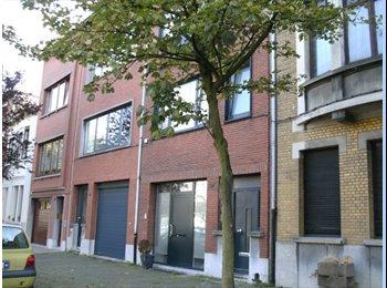 Leuke kamers met grote gemeensch woonkamer (Antwerpen)