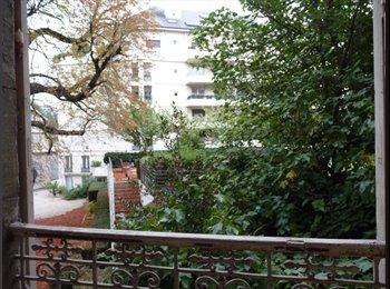Appartager FR - Chambres rénovées, centre ville. - Hyper-centre, Grenoble - €380