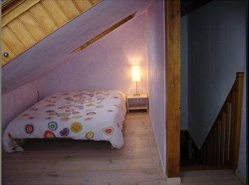 Appartager FR - Collocation centre Orléans calme et confortable - Orléans, Orléans - €350
