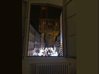 Appartager FR - Plus belle vue de Strasbourg - Cathédrale, Strasbourg - €350