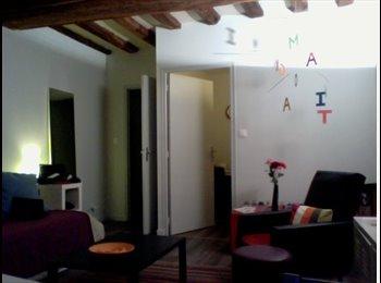 Appartager FR - Appartement à louer avec collocataire occasionnel - Angers, Angers - €400