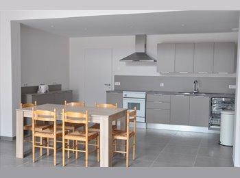 Appartager FR - Maison totalement rénovée pour colocation - 3ème Arrondissement, Lyon - €450