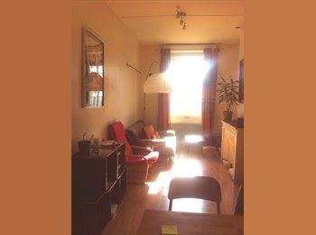 Appartager FR - Bel appartement près du Rhône à 100m des facs - 7ème Arrondissement, Lyon - €425