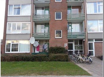 EasyKamer NL - Mooie kamer beschikbaar - Deventer, Deventer - €300