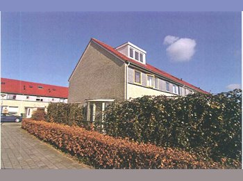 EasyKamer NL - Nette gemeubileerde kamers Sambastraat Almere - Almere, Almere - €375