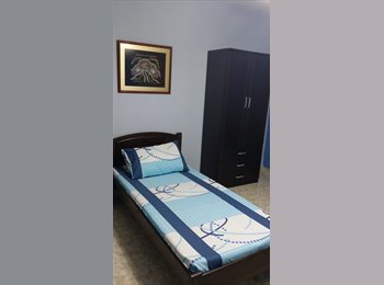 Common Single Room (Spacious)