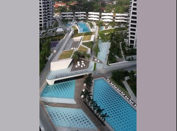 EasyRoommate SG - New Condo Common Bedroom with Pool View - Holland, Singapore - $1200