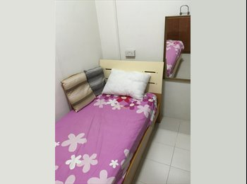 EasyRoommate SG - Cosy Room - Singapore, Singapore - $450