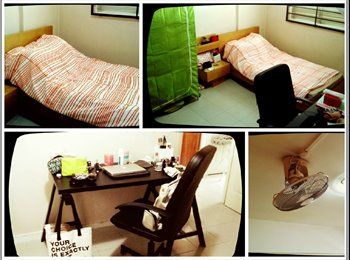 EasyRoommate SG - Common Room for Rent at Woodlands 101 - Woodlands, Singapore - $550