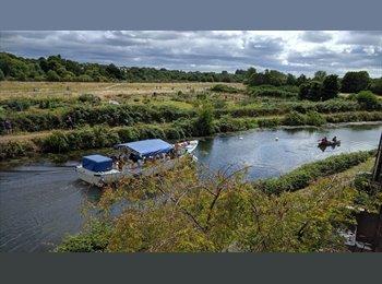 EasyRoommate UK - Quayside living :-) - Exeter, Exeter - £370