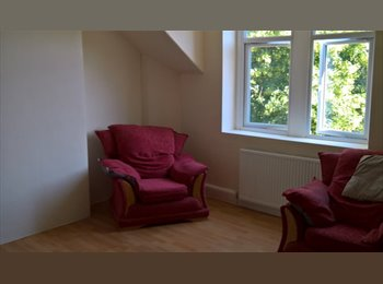EasyRoommate UK - One bed flat close to town. Available APRIL 28th - Canton, Cardiff - £500