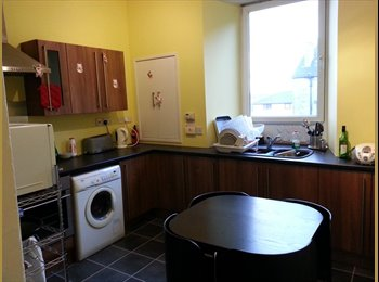 Rooms to Let - Suit Student / Professional