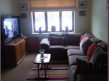 double room in 3 bed semi detached