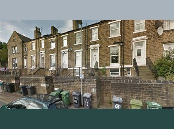 EasyRoommate UK - Room Availability, Needs Immediate Tenancy - Huddersfield, Kirklees - £364