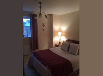 EasyRoommate UK - 1 bedroom avaiable - Portishead, Bristol - £500