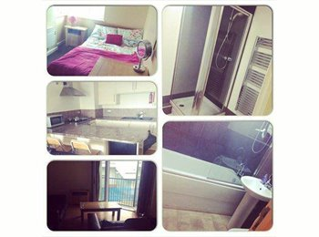 EasyRoommate UK - Double Room - Anolha House! - Newcastle City Centre, Newcastle upon Tyne - £320