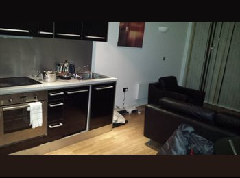 EasyRoommate UK - Double room in city centre - carlsberg  style flat - Leeds Centre, Leeds - £250