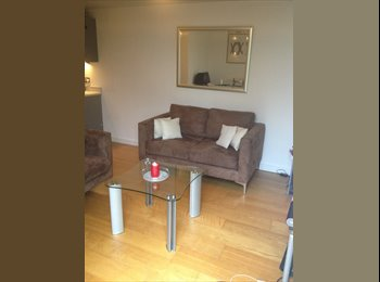 Large Double Bed in Professional Share