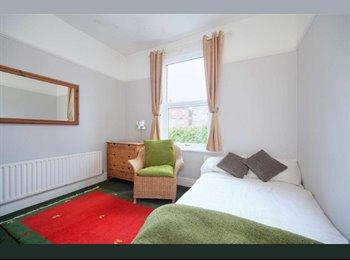 EasyRoommate UK - Double room in friendly house near university - Crookes, Sheffield - £368