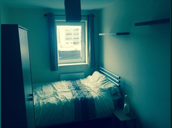 EasyRoommate UK - Small double room in flat - Canton, Cardiff - £325