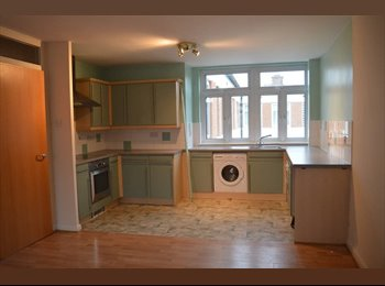 ROOM IN WORCESTER CITY CENTRE FLAT TO LET